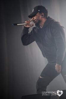 Kendrick Lamar at Krakow Live Festival 2015_Gosia Wanda-3